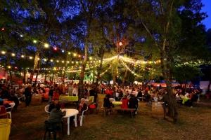 Carbunica - Le Nouveau Festival d'Alba-la-Romaine, le 12 juillet 2014